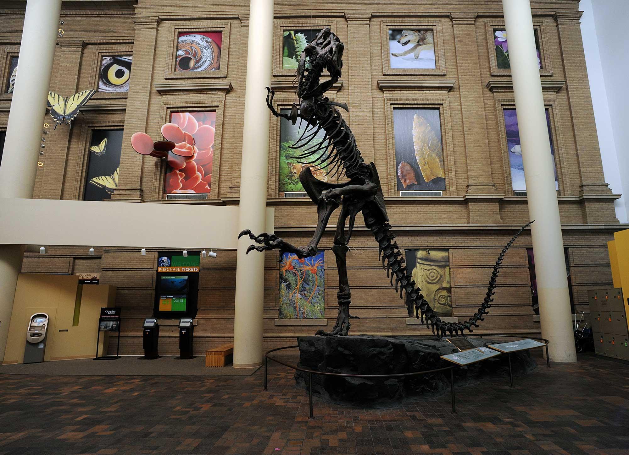 Colorado Dinosaur Museums & Sites | Colorado.com