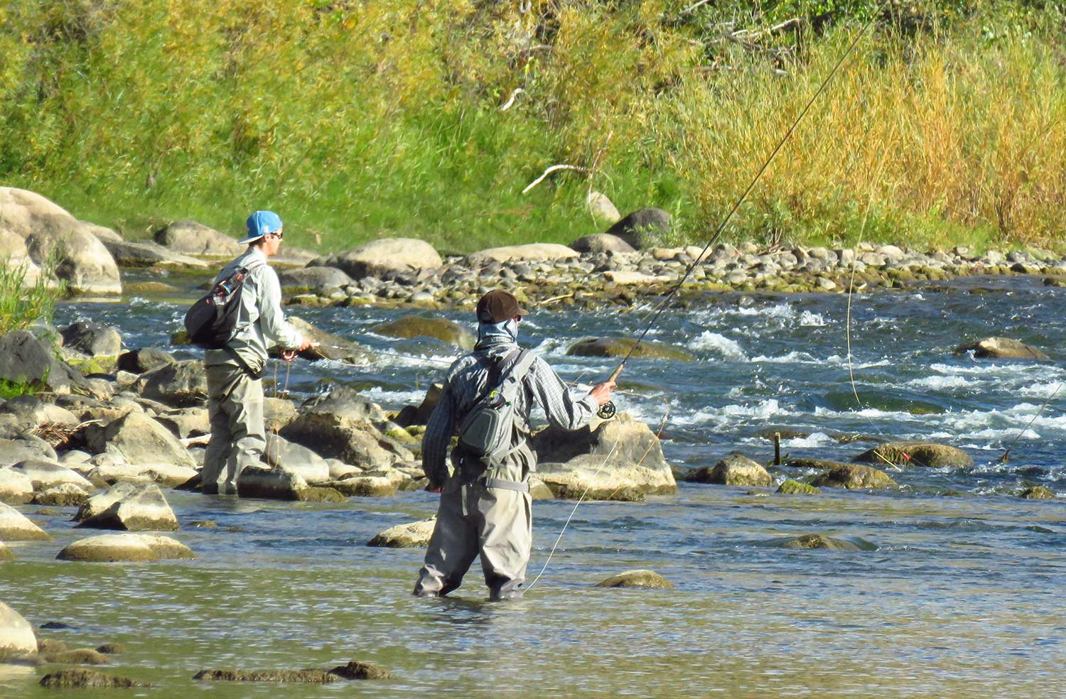 10 Western Colorado Fly-Fishing Spots | Colorado.com