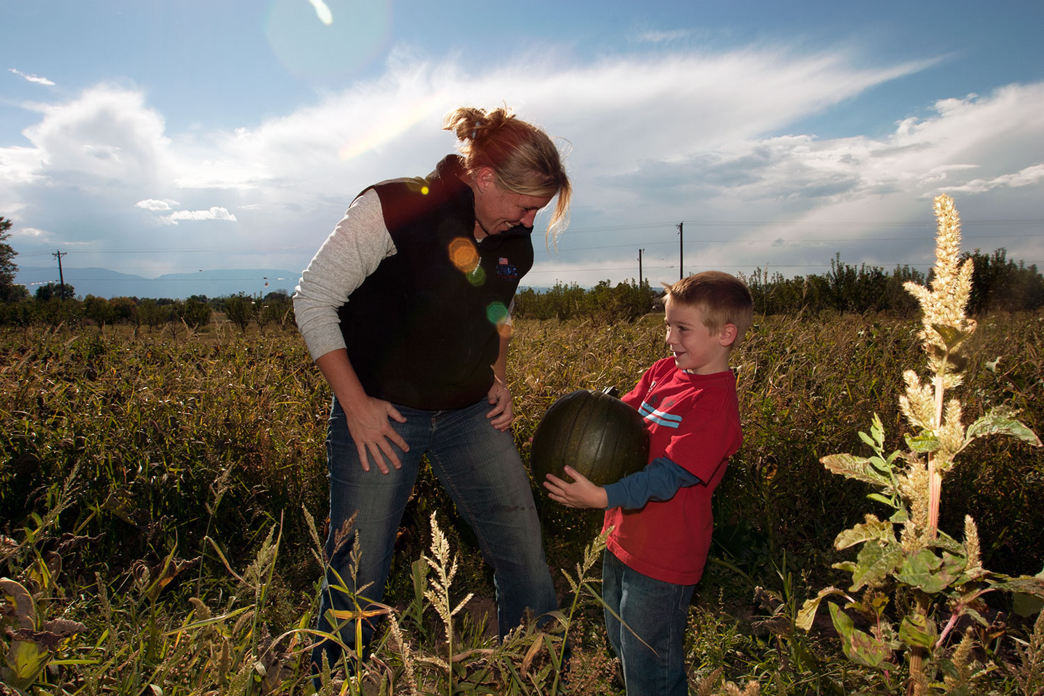 Pumpkin Patches, Corn Mazes, Farmers Markets & Other Fall Fun in ...