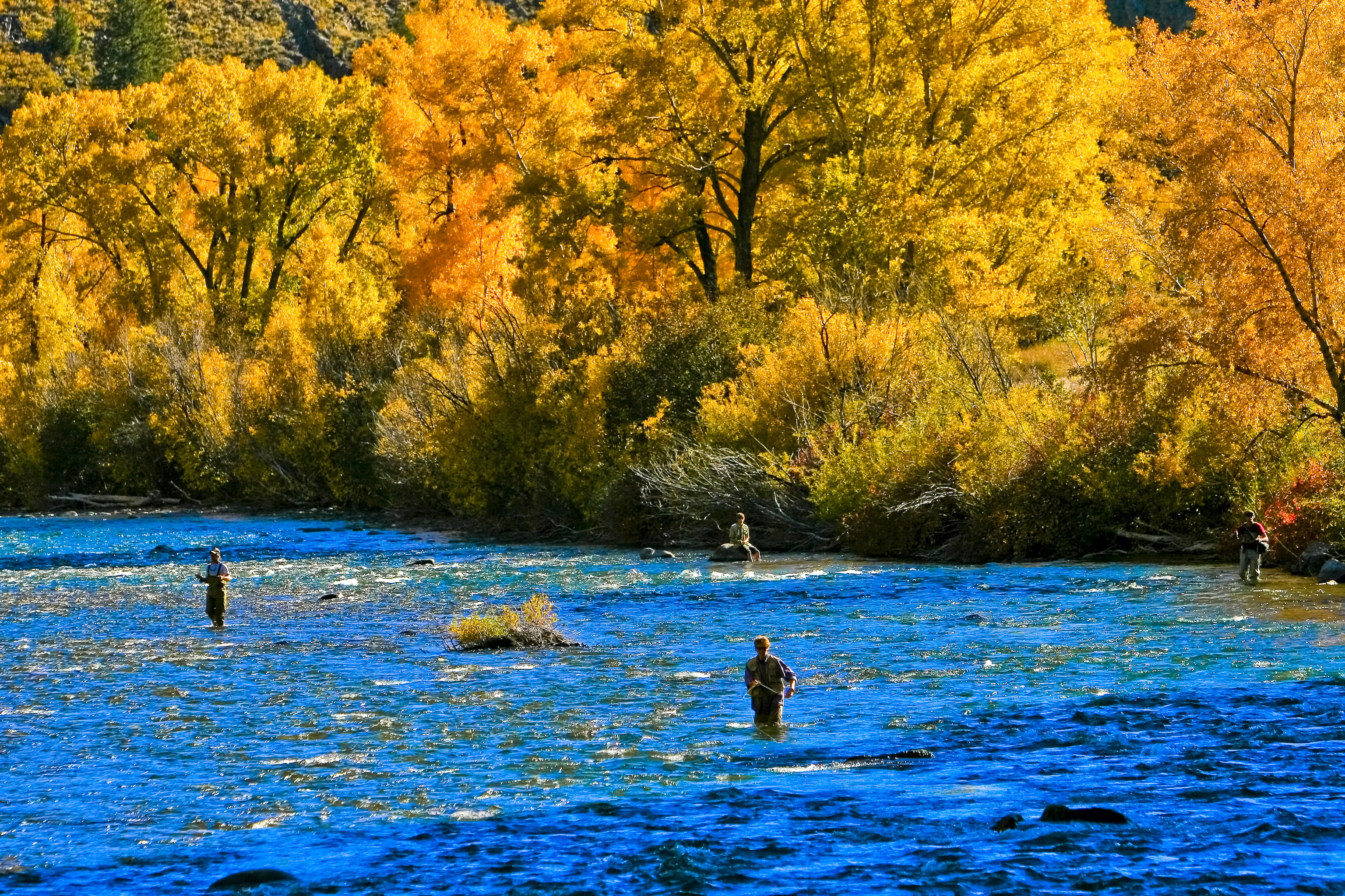 top places to fish in colorado