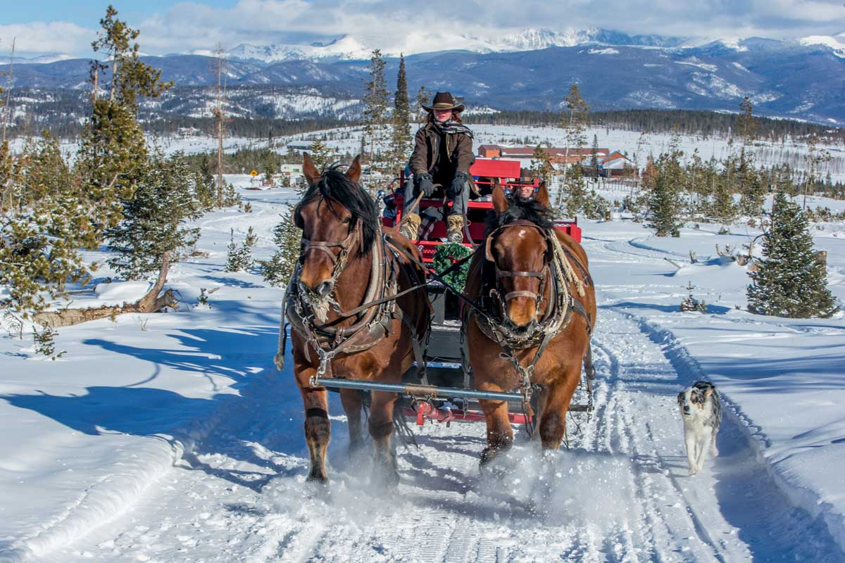 Horse Drawn Sleigh Rides In Colorado Colorado Com