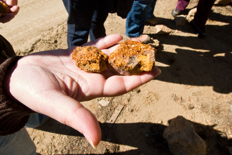 Colorado Mine Tours & Gold Rush Towns | Colorado com